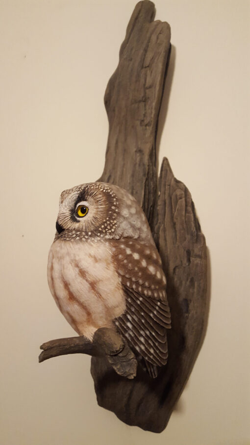 Completed wall mount boreal owl