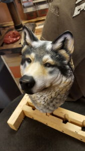Gray wolf, painting, carving, sculpting, woodwork