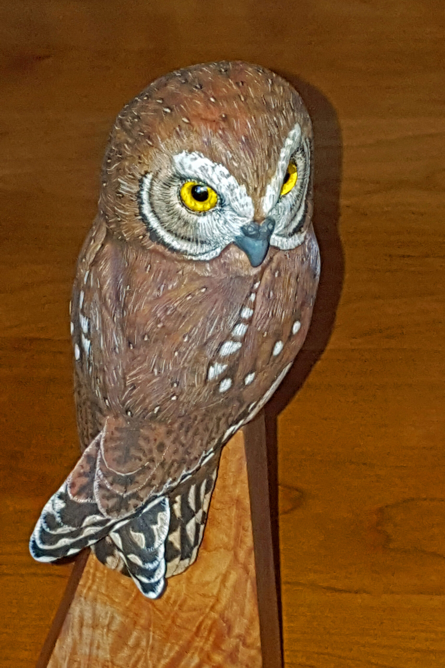 Owl, elf owl, birds, wood carving, sculputure, fine art,