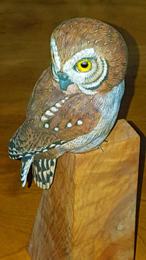 Owls, Elf owl, carving, birds, sculpture,