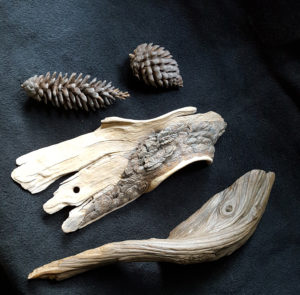 carvings, pine cones, nature, sculpture, wood carving.