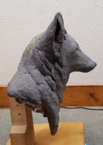 sculpting, wood carving, clay sculpture, red fox, wildlife sculpture, wood carving