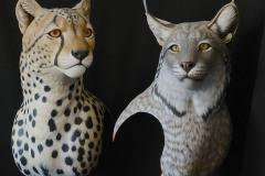 Cheeta and Lynx